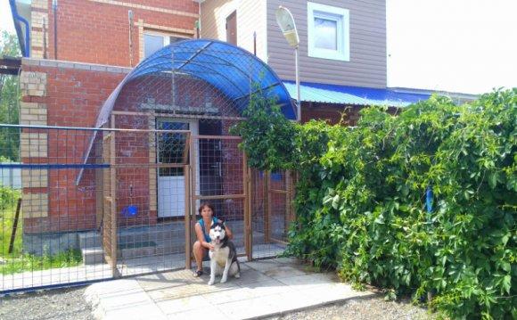 Гостиница для собак и кошек в